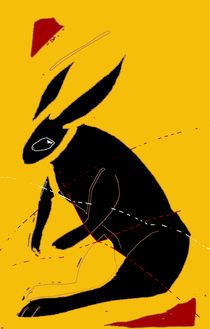 Rabbit/Hare von literal-illustrations