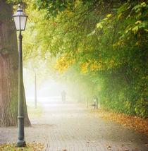 Oktobernebelmorgen von Franziska Rullert