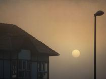 Nebelsonne von Franziska Rullert