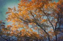 Vintage autumn by AD DESIGN Photo + PhotoArt