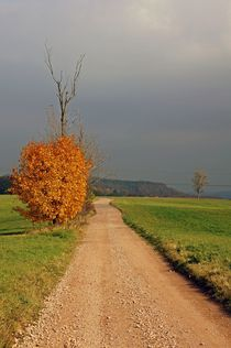 Herbstlandschaft by Juana Kreßner