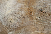 Holzmaserung by Juana Kreßner