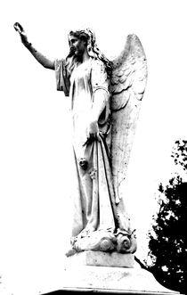 Guardian Angel by Chelsea McPherson