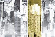 New-york-quartett-metropolis-honey-5-4