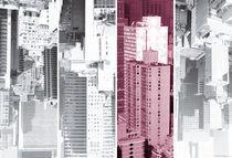 NY Metropolis Quartett DRAGONFRUIT von temponaut