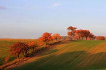 Herbstlandschaft by Wolfgang Dufner