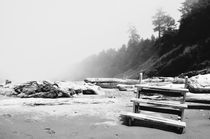 Winter Beach von Weston Baker