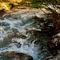 Tangle-creek