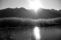 Quinault River Valley von Weston Baker