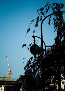 tokyo giraffe by Go Sugimoto