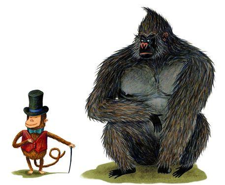 Monkey-and-gorillashad