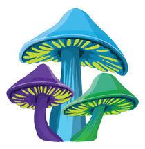 Funky Mushrooms - White by Jen K
