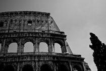 Coliseum, Rome von David Carvalho