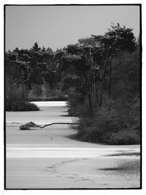 Winter-oisterwijk-06