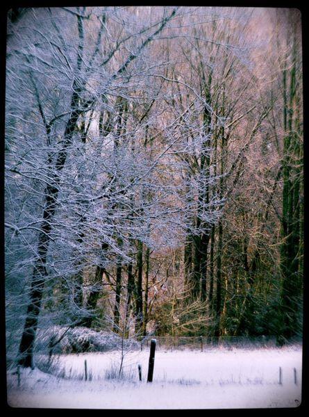 Winter-oisterwijk-07
