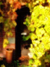 The gardener's door 1 von Chris Atkinson