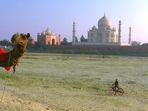Behind the Taj Mahal von Andras Nagymihaly