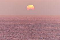 Pink sunset  by Irina Moskalev