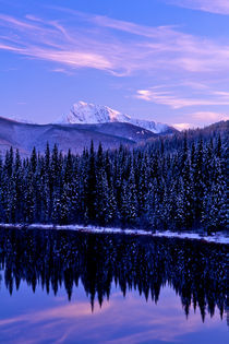 Wilderness Calm 345 von Patrick O'Leary
