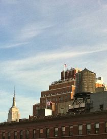 View from the High Line in New York City by Giorgio  Davanzo