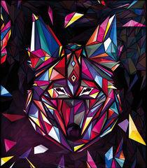 Coyote-drasik
