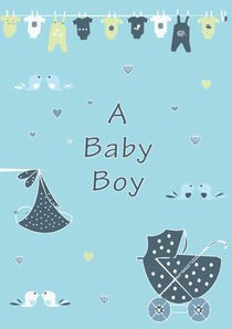 A Baby Boy  by Caroline Allen
