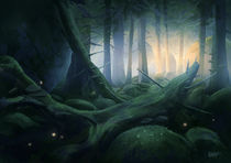 The Forest by Mats Minnhagen