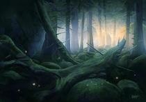 The Forest von Mats Minnhagen