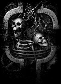Skulls by Pawel Somogyi