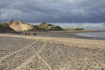 Sand dunes in the sun von 56degreesphotography