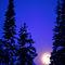 409af-moonfall-960981-002-v-4-v-15-v-23