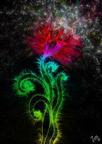 Energy II by Jessica Loza