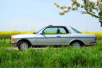 Oldtimer Mercedes Benz by Katrin Lantzsch
