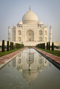 Front View of the Taj Mahal with Reflection