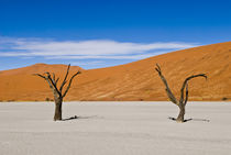 2 Dead Acacia Trees at Dead Vlei by Russell Bevan Photography