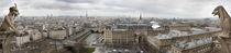 Paris Chimeras von JEAN-MARC GIBOUX