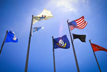 Memorial Flags by Victor Green
