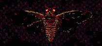 Cicada  by Joshua Mikel