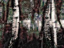 Zauberwald #3 von mimulux