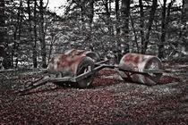 Herbstspaziergang-grafrat-ii-2
