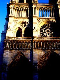Pary-luty-07-zabytki-jej-wysokoc-notre-damme-de-par