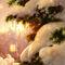 Snowy-tree-finhr