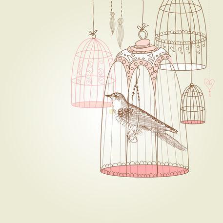 Bird6-01