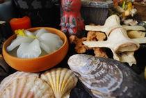 Shells 'n Such von Heather Pace