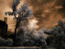 infrared park by Mihail Leonard Bodor