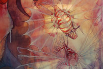 Pterois volitans von Kate Toluzakova