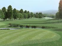 Golfing-pleasure