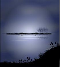 Along the Lake by Tim Seward