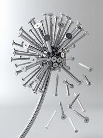 Dandelion of screws by André Kutscherauer