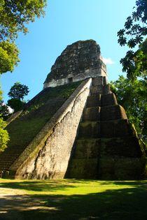 Beeindruckende Maya-Pyramide in Tikal,Guatemala mitten im Dschungel von Mellieha Zacharias